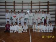 2011 tinik